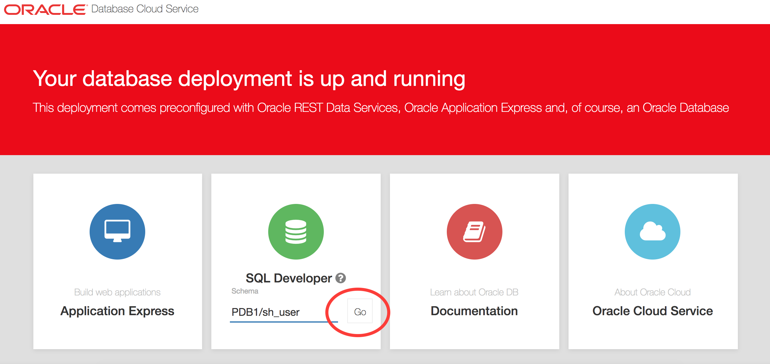 Oracle SQL Developer - now in web! | Official Pythian® Blog