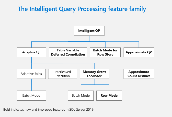 The Intelligent Query Processing feature family.
